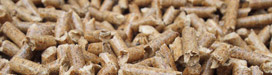 Biomasa | Renovables | Crisol Energía Renovable