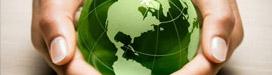 Medio Ambiente | Crisol Energía Renovable